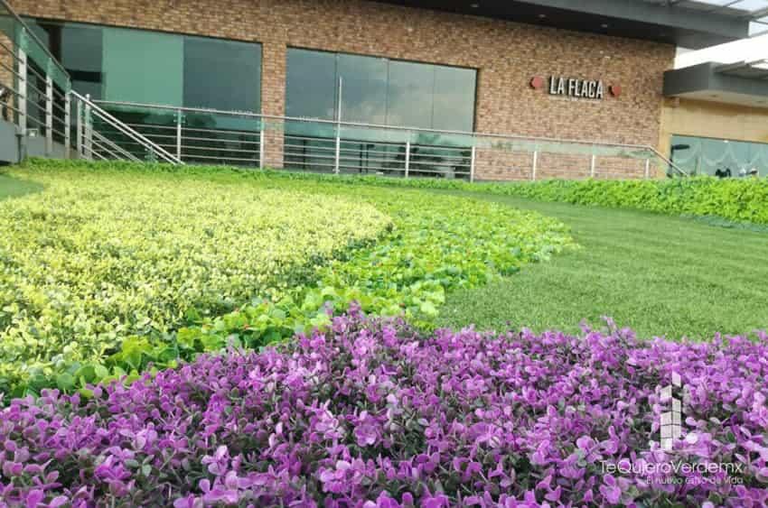 Plantas verdes exterior finest amazing estos partes del for Jardin vertical verdecora