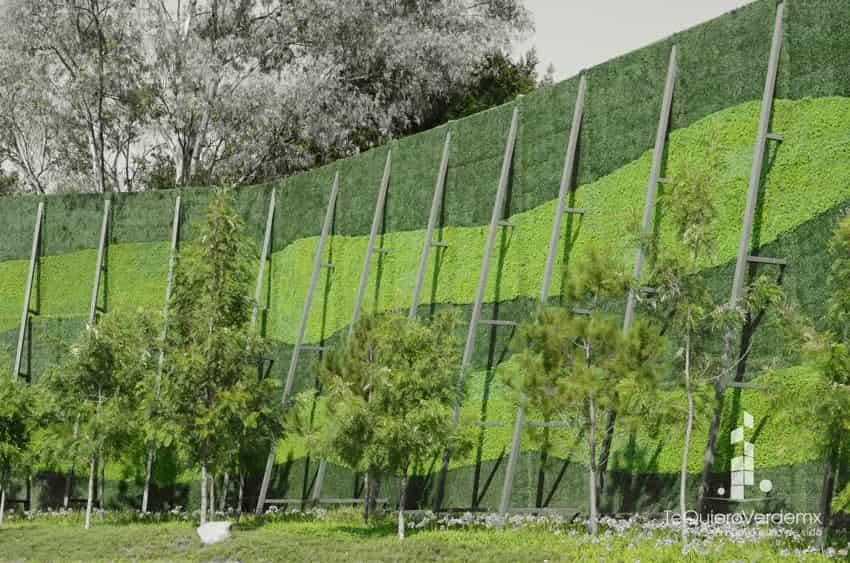 Muros verdes artificiales para interiores y exteriores te for Plantas para muros verdes exteriores